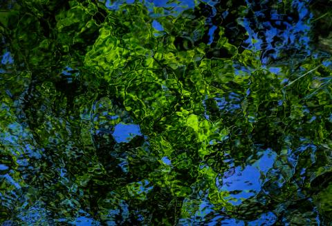 Wasserzeichnung grün-blau
